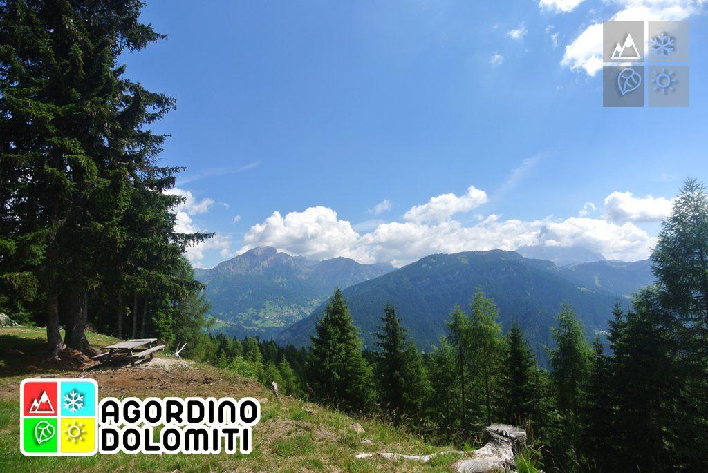 Cima_Sasso_Bianco_Escursioni_Nelle_Dolomiti (9)