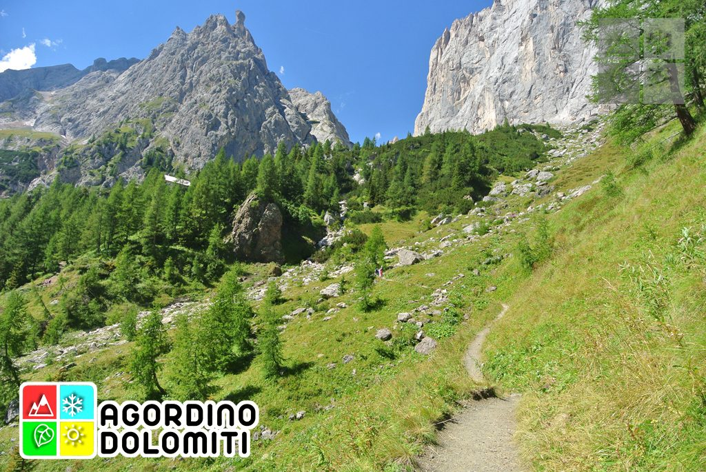Escursioni in Agordino   Dolomiti UNESCO