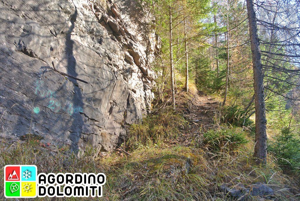 Paleoalveo del Monte Anime | Cencenighe Agordino | Dolomiti