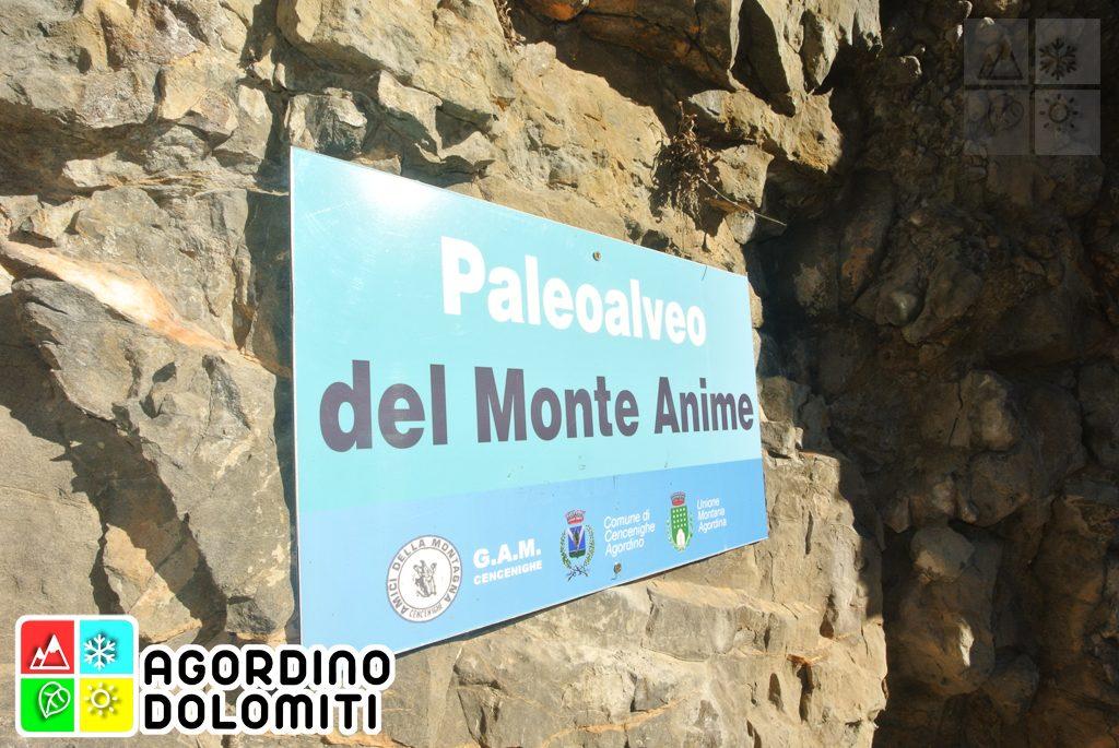 Paleoalveo del Monte Anime