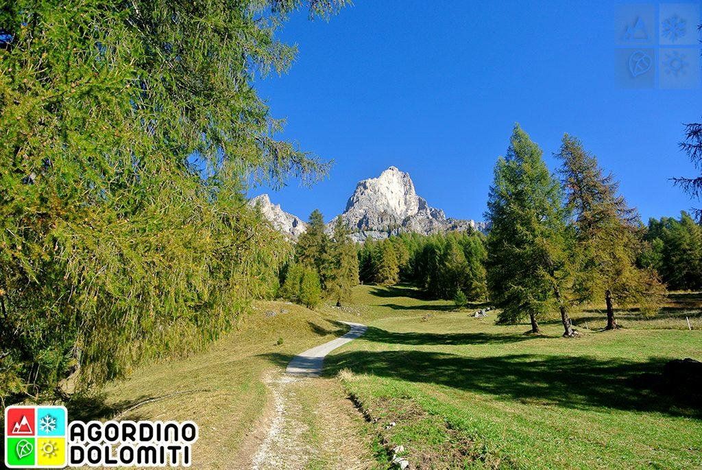 Toffol - Mandriz - Piz del Corvo - Mondeval de Sora - Toffol | Sulle tracce di Cazzetta tra i colori dell'Autunno nelle Dolomiti | Selva Di Cadore | Agordino Dolomiti